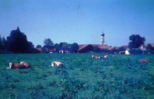 Blick von der Hubertusstraße, 1980