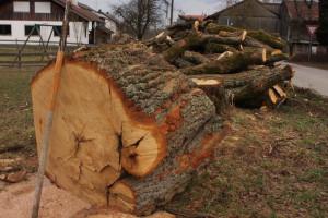 Haufen Holz